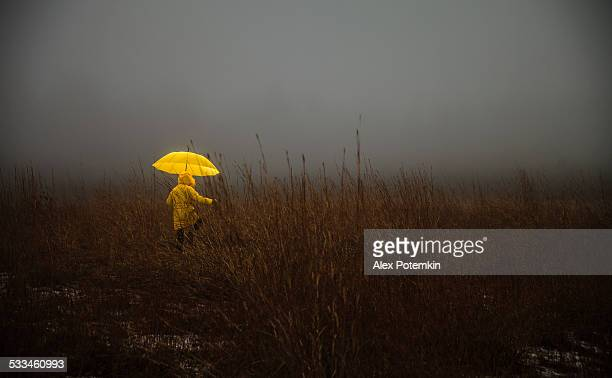 little girl crossing the field in fog - moed stockfoto's en -beelden