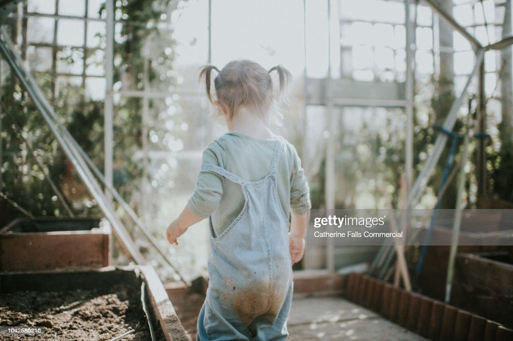 Little girl digging in soil : Stock Photo