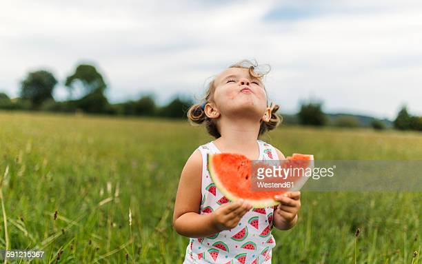 little girl eating watermelon on a meadow - watermelon stock pictures, royalty-free photos & images