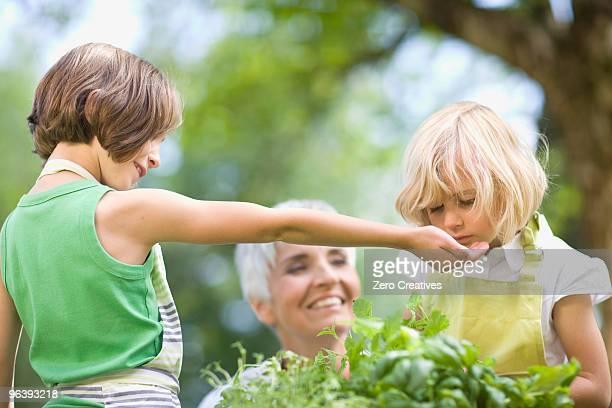 little girl examines something carefully