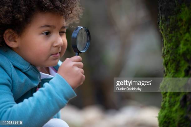 little girl exploring the forest. - elementary age stock pictures, royalty-free photos & images