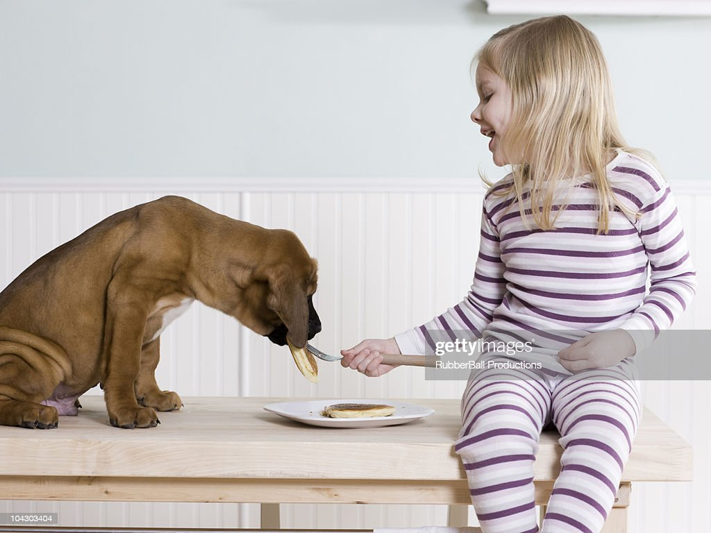 little girl feeding pancakes to her dog : Stock Photo