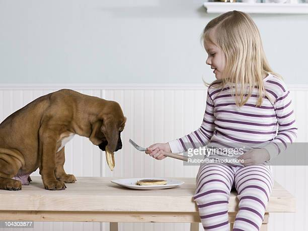 little girl feeding pancakes to her dog - dog eats out girl stock pictures, royalty-free photos & images