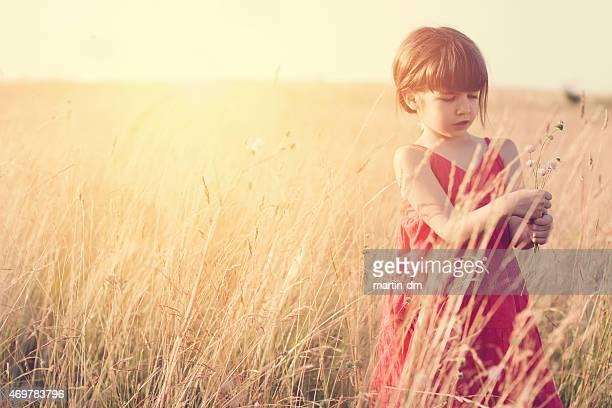 Little girl gathering flowers among nature