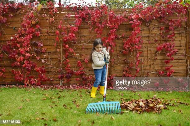 Little girl helping to rake leaves in the garden