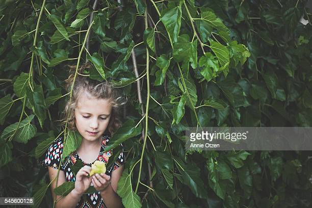 Little girl Hiding Behind Tree Branches