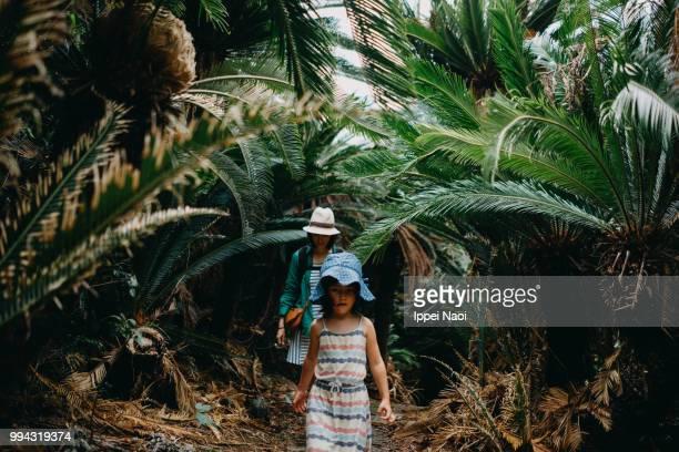 Little girl hiking in jungle, Amami Islands National Park, Japan