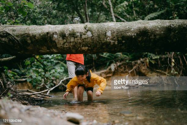 little girl hiking in jungle river, okinawa, japan - reality fernsehen stock pictures, royalty-free photos & images