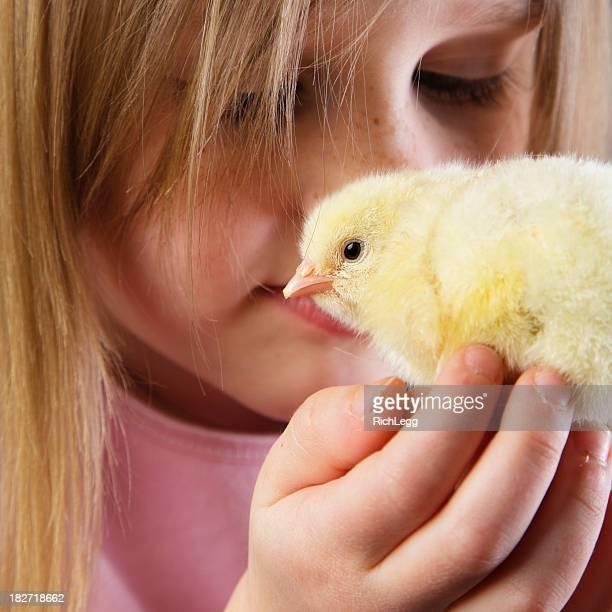 Petite fille tenant un bébé Chick