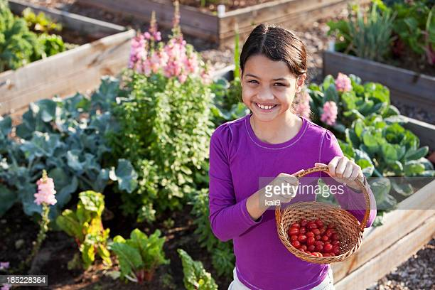 Little girl holding basket of tomatoes