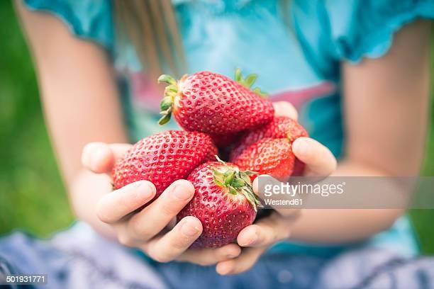 little girl holding handful of strawberries, partial view - mädchen stock-fotos und bilder