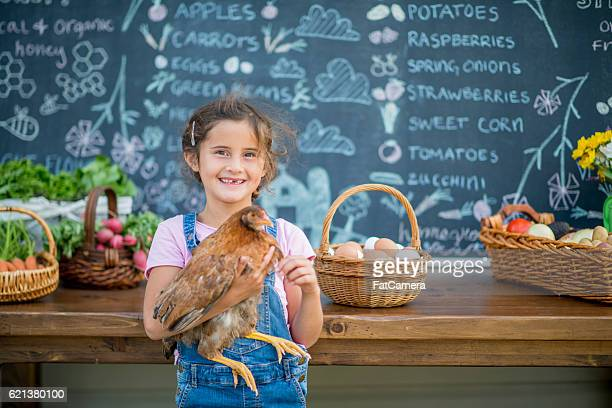 little girl holding her chicken - farm to table stock photos and pictures