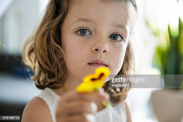 Little girl holding pansy blossom in her hand, close-up