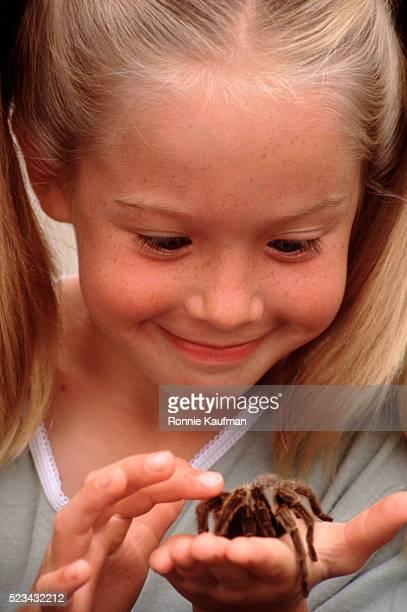 Little Girl Holding Tarantula