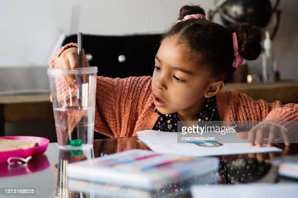 """little girl homeschooling on the dining room table. - """"martine doucet"""" or martinedoucet stock pictures, royalty-free photos & images"""