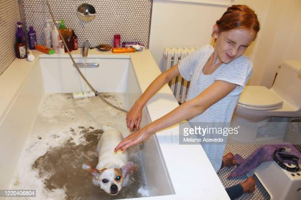 Little girl in a bathroom washing her dog in a bathtub. She's getting splashed with water so she's turning her face away from the dog and making a squished up face.