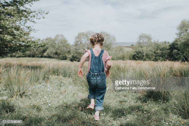 little girl in a field - small stock pictures, royalty-free photos & images