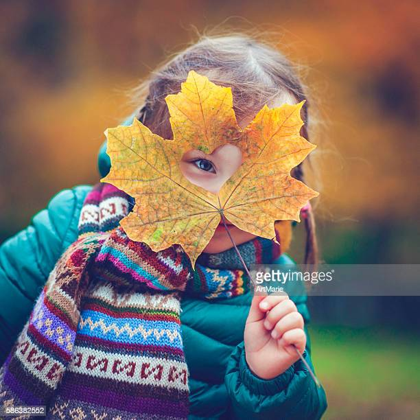 little girl in autumn park - young leafs stock photos and pictures