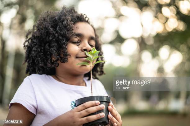 little girl in garden, smelling fresh plant - smelling stock pictures, royalty-free photos & images