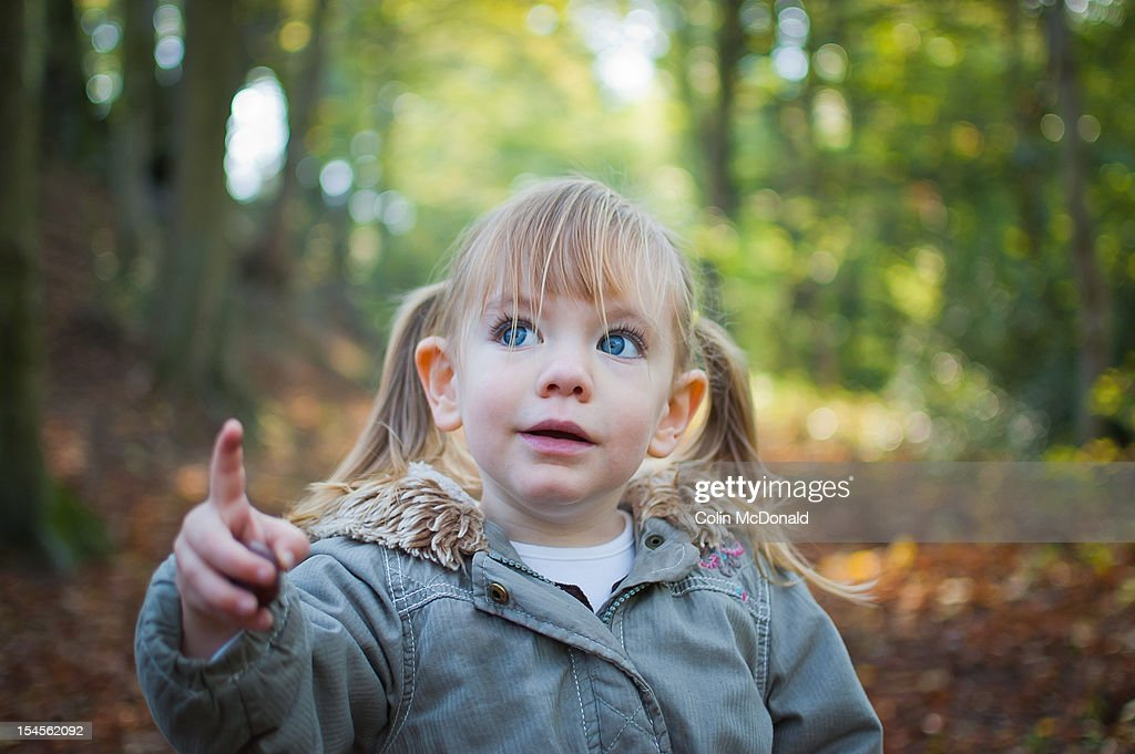 Little girl in the autumn woods : Stock Photo