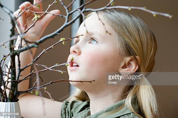 Little Girl Looking at Buds