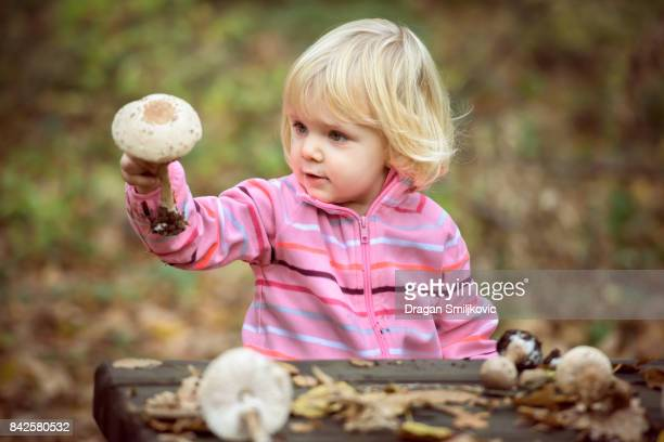 little girl looking parasol mushrooms - spore stock pictures, royalty-free photos & images