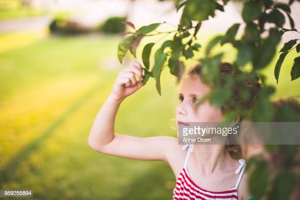 Little Girl looks at tree leafs