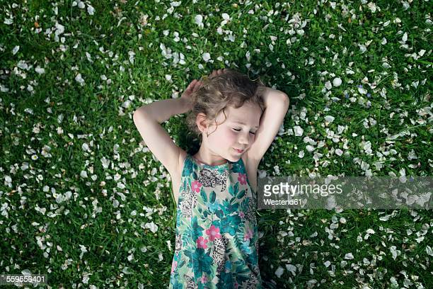 Little girl lying on meadow with scattered apple blossoms