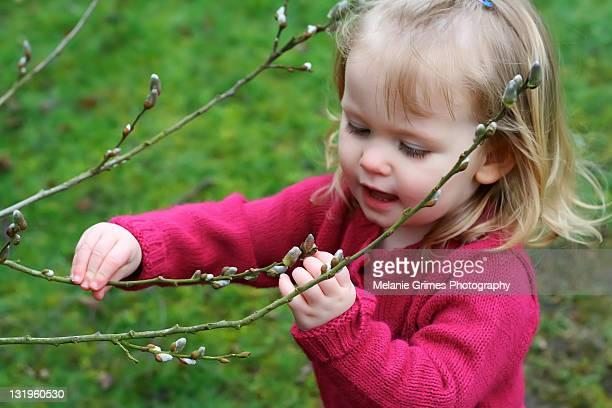 Little girl near tree buds