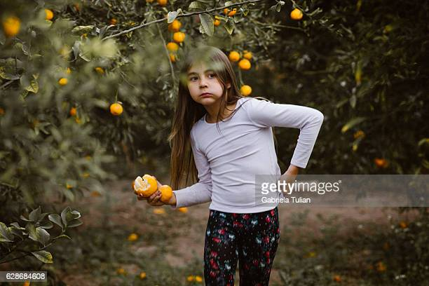 Little girl picking and eating tangerines/oranges