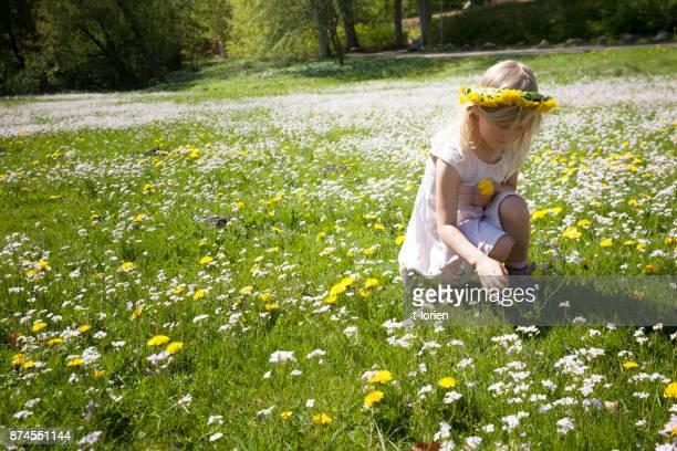 Kleine Mädchen pflücken Blumen