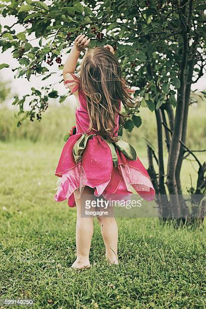 Little Girl picking wild cherries