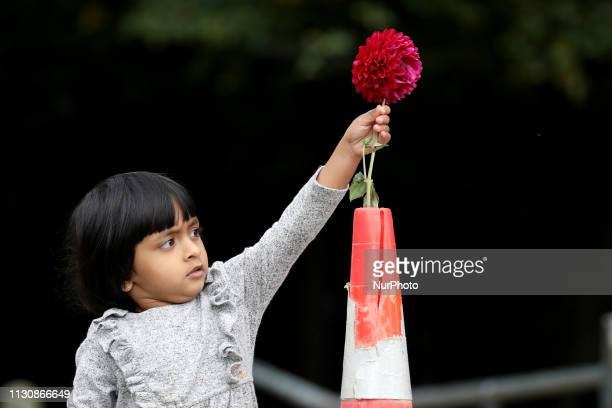 A little girl places a flower as a tribute to victims of the mosque attacks outside the Masjid Al Noor mosque in Christchurch on March 16 2019 At...