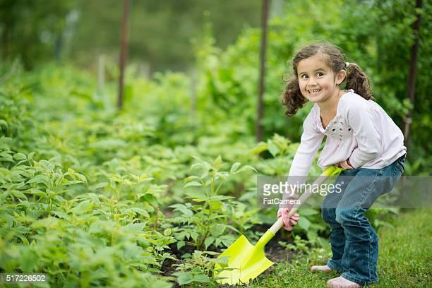 Little Girl Planting a Garden