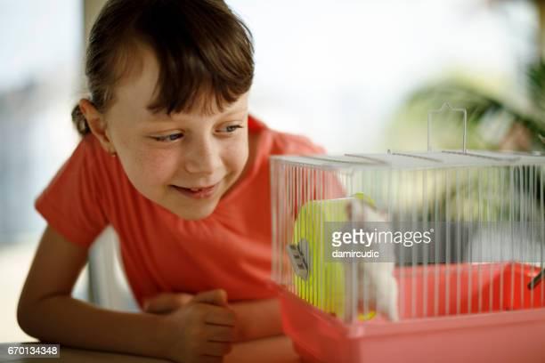 petite fille jouant avec un hamster - hamster photos et images de collection
