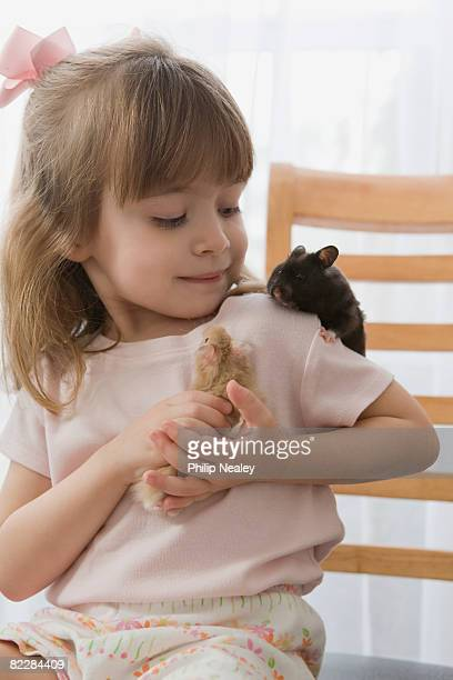 little girl playing with her hamsters - hamster photos et images de collection