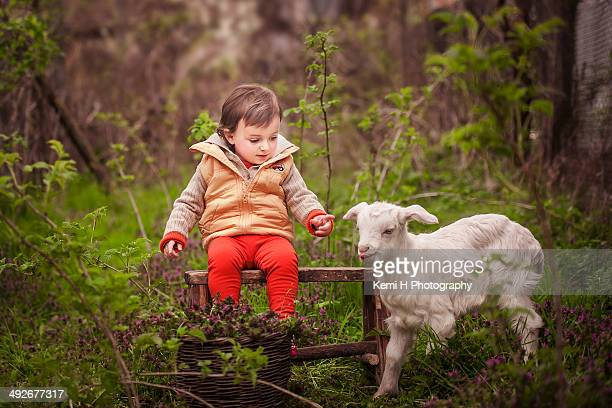 little girl playing with little goat in the garden