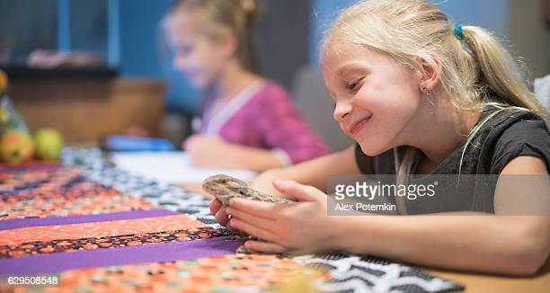 Little girl playing with reptile pet, when sister doing homework