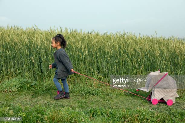little girl pulling origami elephant on rolls at field - dierenwelzijn stockfoto's en -beelden
