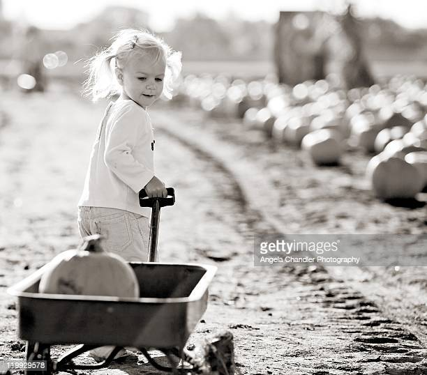 little girl pulling wagon - black and white vegetables stock photos and pictures