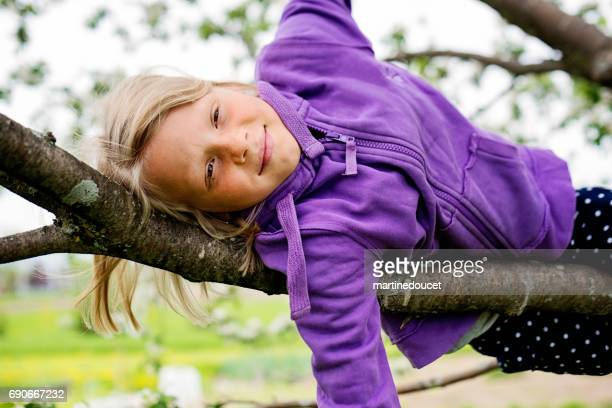 Little girl reclining on a blossoming apple tree branch.