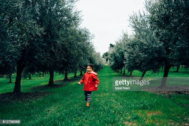 Little girl running in olive orchard, Melbourne, Australia