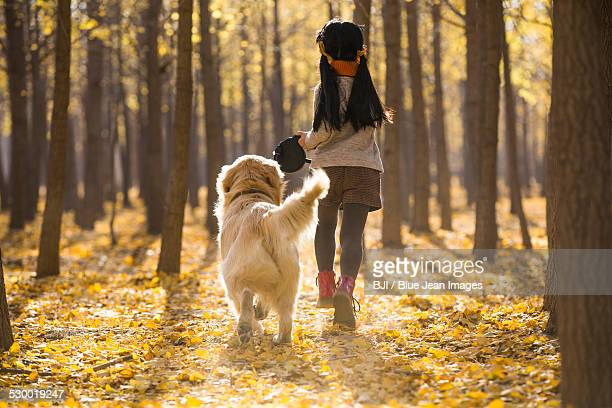 little girl running with dog in autumn woods - guide dog photos et images de collection