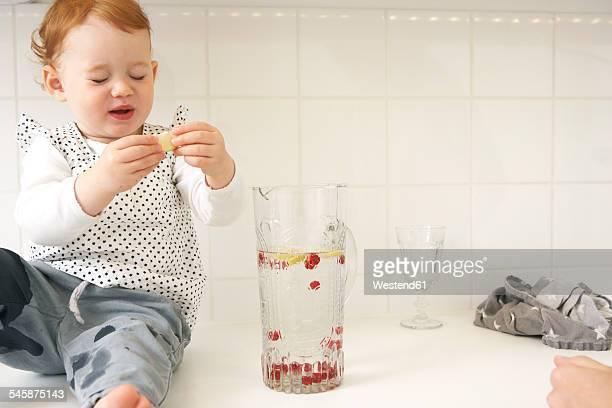 Little girl sitting on kitchen counter tasting lemon slice