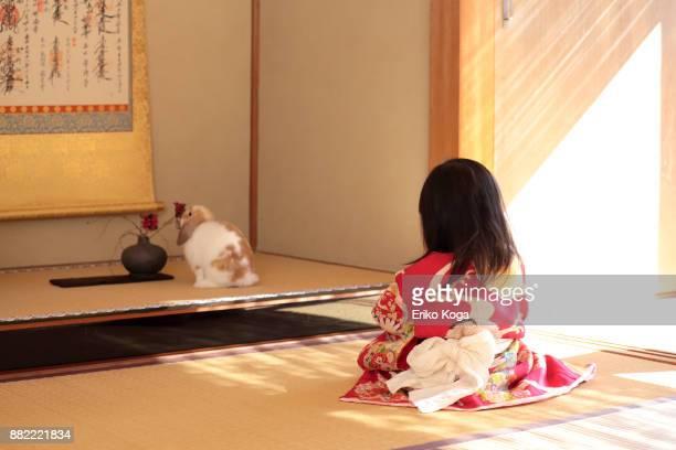 little girl sitting on tatami with rabbit - 日本建築 ストックフォトと画像