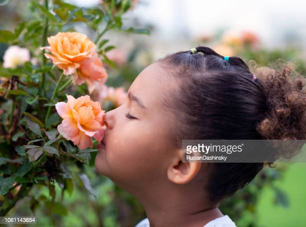Little girl sniffing a rose.