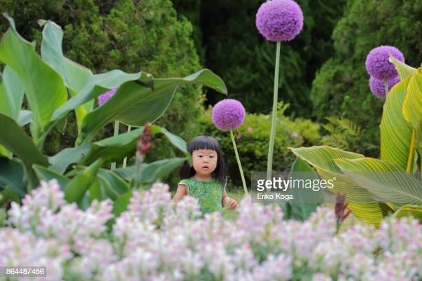little girl standing in flower garden - botanical garden stock pictures, royalty-free photos & images