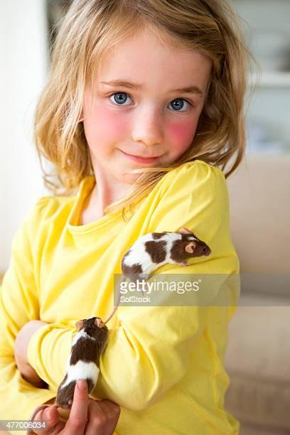 Little Girl Stroking Domestic Mice