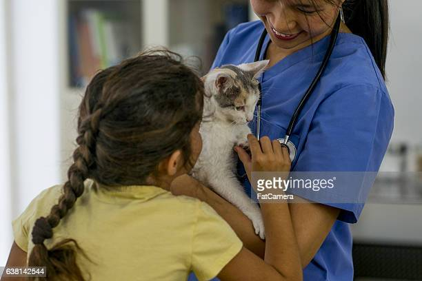 Little Girl Taking Her Kitten to a Vet