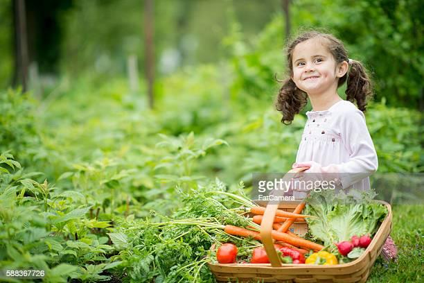 Little Girl Tending to the Garden